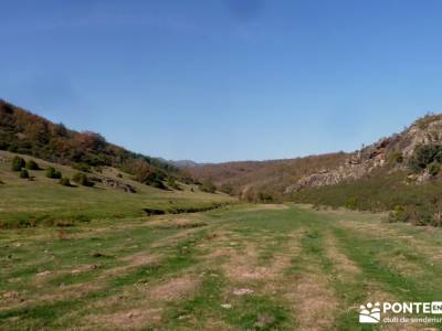 Parque Natural de Tejera Negra - Cantalojas - Guadalajara - Sierra de Ayllón;caminata rápida